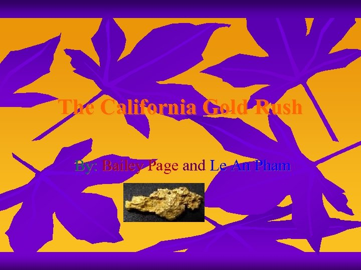 The California Gold Rush By: Bailey Page and Le An Pham