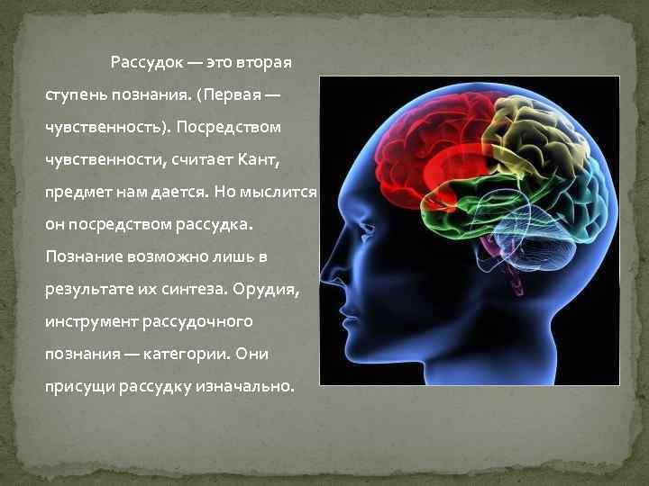 Рассудок — это вторая ступень познания. (Первая — чувственность). Посредством чувственности, считает Кант, предмет