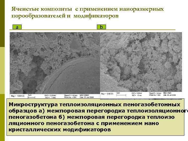Ячеистые композиты с применением наноразмерных порообразователей и модификаторов a b Микроструктура теплоизоляционных пеногазобетонных образцов