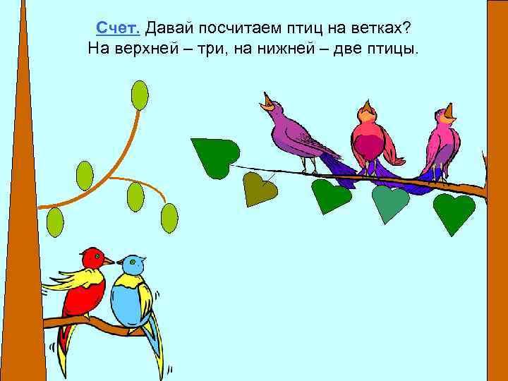 Счет. Давай посчитаем птиц на ветках? На верхней – три, на нижней – две
