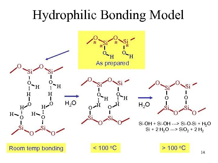 Hydrophilic Bonding Model O O * *Si * O Si O O Si H