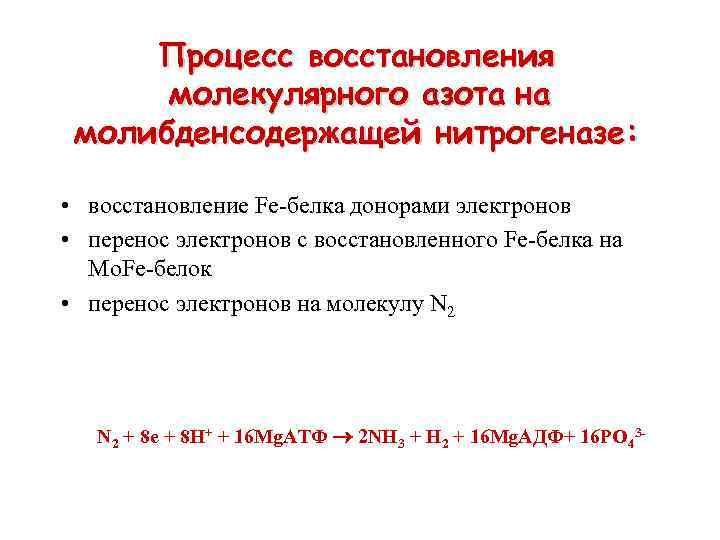 Процесс восстановления молекулярного азота на молибденсодержащей нитрогеназе: • восстановление Fe-белка донорами электронов • перенос