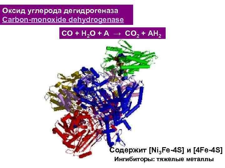 Оксид углерода дегидрогеназа Carbon-monoxide dehydrogenase CO + H 2 O + A → CO