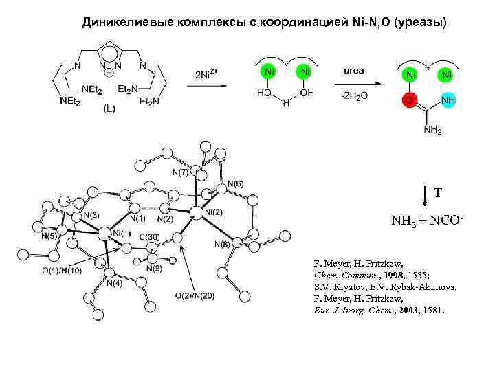 Диникелиевые комплексы с координацией Ni-N, O (уреазы) T NH 3 + NCOF. Meyer, H.