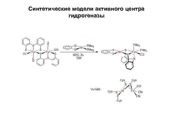 Синтетические модели активного центра гидрогеназы