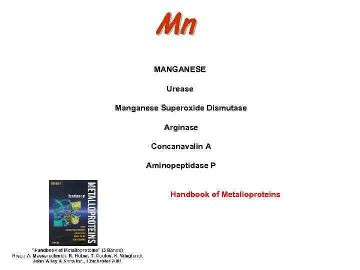 Mn MANGANESE Urease Manganese Superoxide Dismutase Arginase Concanavalin A Aminopeptidase P Handbook of Metalloproteins