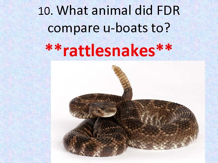 10. What animal did FDR compare u-boats to? **rattlesnakes**