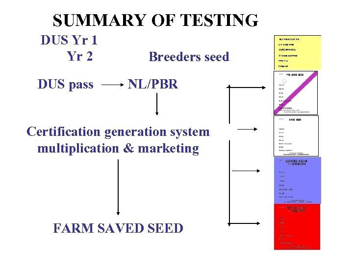 SUMMARY OF TESTING DUS Yr 1 Yr 2 DUS pass Breeders seed NL/PBR Certification