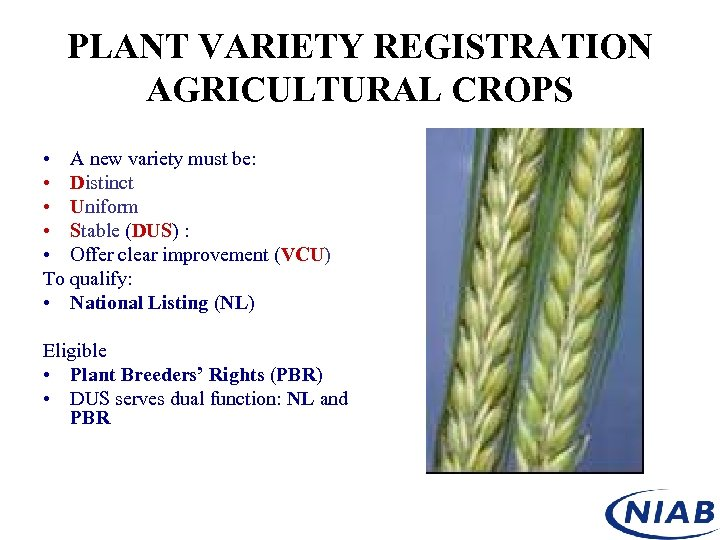 PLANT VARIETY REGISTRATION AGRICULTURAL CROPS • A new variety must be: • Distinct •