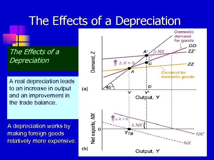The Effects of a Depreciation A real depreciation leads to an increase in output