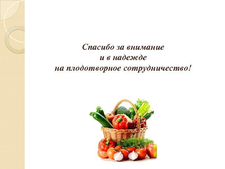Спасибо за внимание и в надежде на плодотворное сотрудничество!