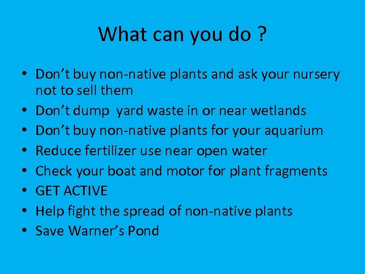 What can you do ? • Don't buy non-native plants and ask your nursery