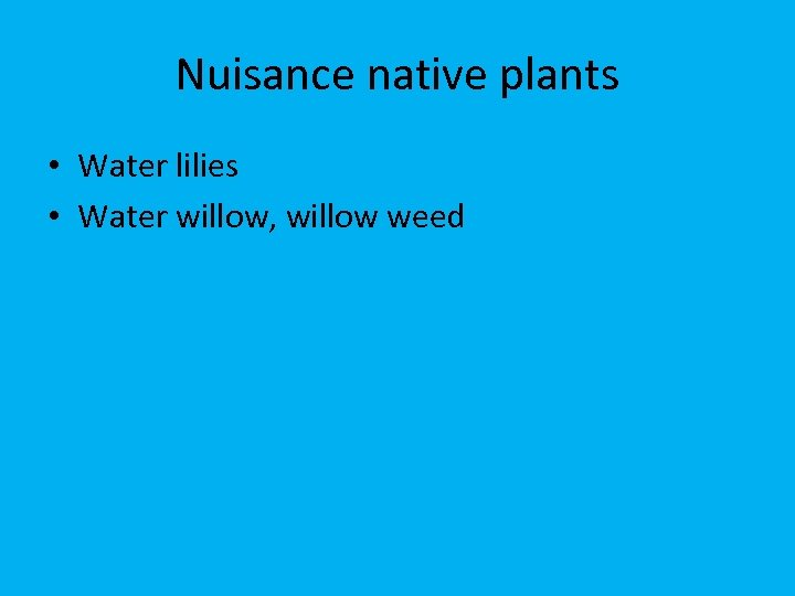 Nuisance native plants • Water lilies • Water willow, willow weed