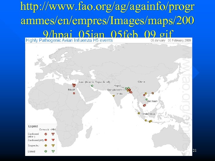 http: //www. fao. org/ag/againfo/progr ammes/en/empres/Images/maps/200 9/hpai_05 jan_05 feb_09. gif 21