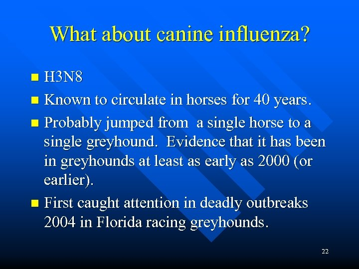 What about canine influenza? H 3 N 8 n Known to circulate in horses