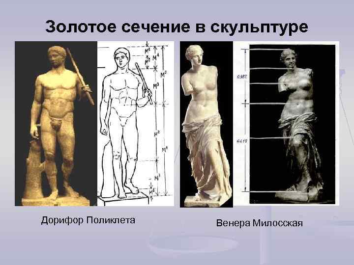 Золотое сечение в скульптуре Дорифор Поликлета Венера Милосская