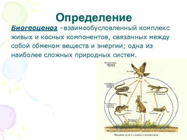 Определение Биогеоценоз –взаимообусловленный комплекс живых и косных компонентов, связанных между собой обменом веществ и