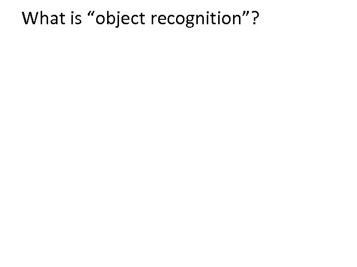 "What is ""object recognition""?"