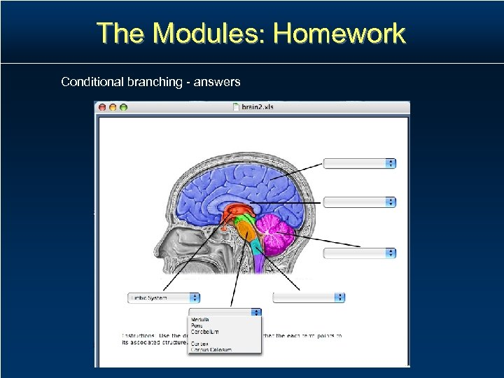The Modules: Homework Conditional branching - answers