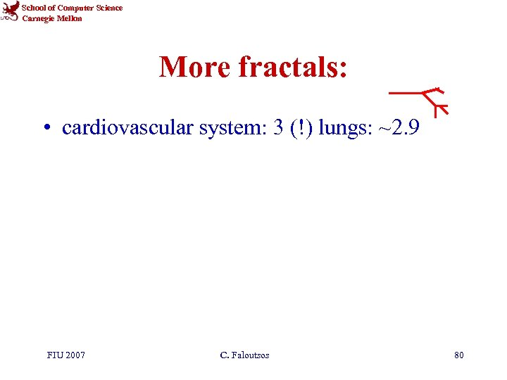 School of Computer Science Carnegie Mellon More fractals: • cardiovascular system: 3 (!) lungs: