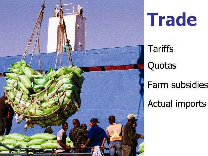 Trade Tariffs Quotas Farm subsidies Actual imports