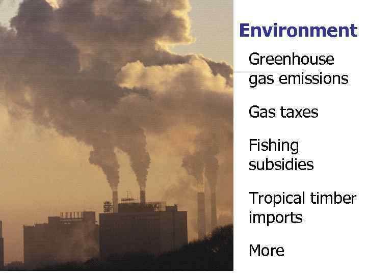 Environment Greenhouse gas emissions Gas taxes Fishing subsidies Tropical timber imports More