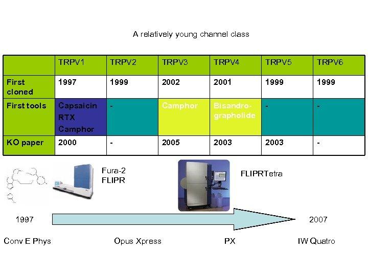A relatively young channel class TRPV 1 TRPV 2 TRPV 3 TRPV 4