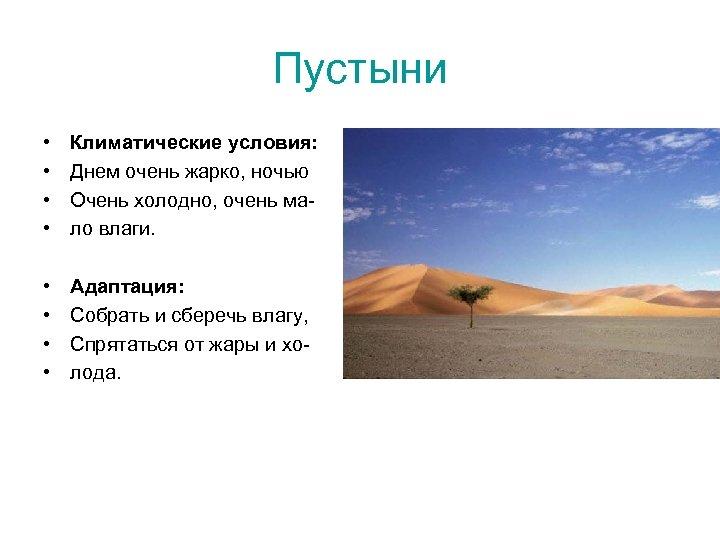 Пустыни • • Климатические условия: Днем очень жарко, ночью Очень холодно, очень мало влаги.