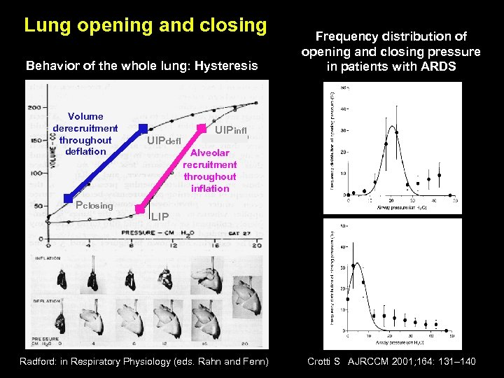 Lung opening and closing Behavior of the whole lung: Hysteresis Volume derecruitment throughout deflation