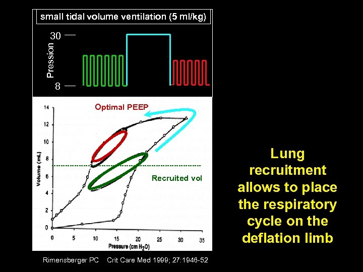 small tidal volume ventilation (5 ml/kg) Pression 30 8 Optimal PEEP Recruited vol Rimensberger