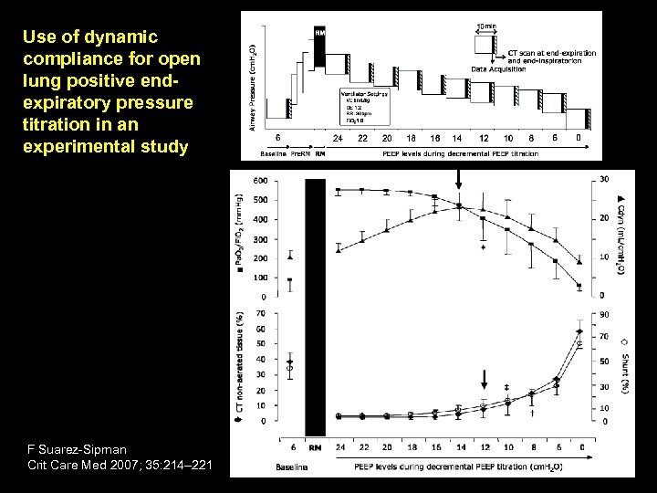 Use of dynamic compliance for open lung positive endexpiratory pressure titration in an experimental