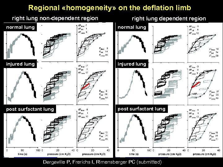 Regional «homogeneity» on the deflation limb right lung non-dependent region right lung dependent region