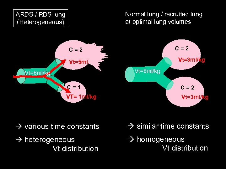 Normal lung / recruited lung at optimal lung volumes ARDS / RDS lung (Heterogeneous)