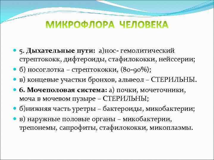5. Дыхательные пути: а)нос- гемолитический стрептококк, дифтероиды, стафилококки, нейссерии; б) носоглотка – стрептококки,