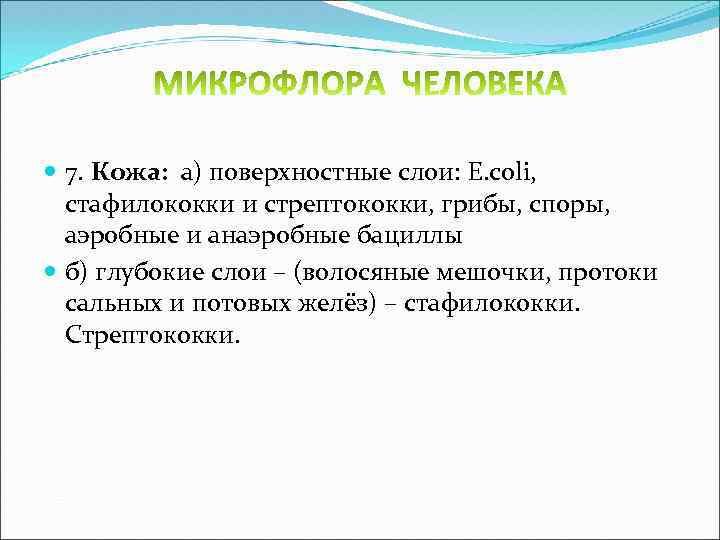 7. Кожа: а) поверхностные слои: E. coli, стафилококки и стрептококки, грибы, споры, аэробные