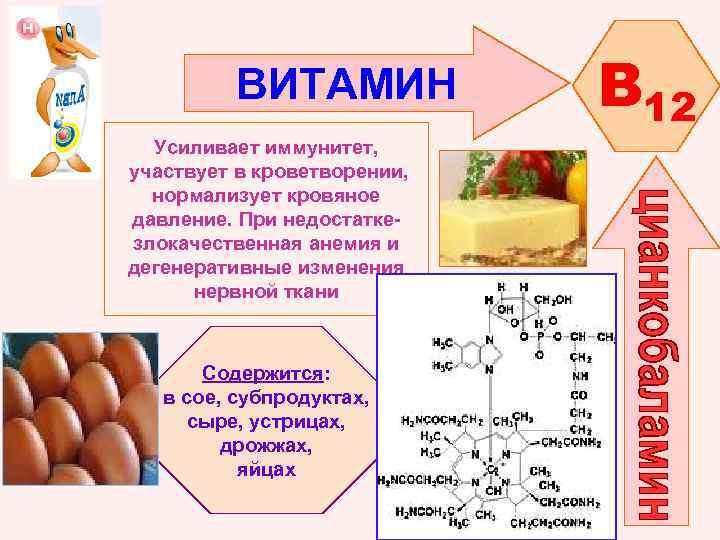 ВИТАМИН Усиливает иммунитет, участвует в кроветворении, нормализует кровяное давление. При недостаткезлокачественная анемия и дегенеративные