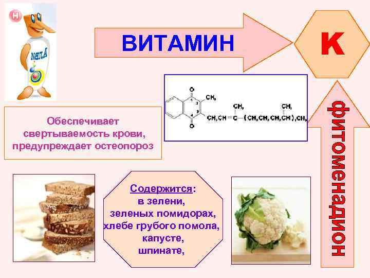 ВИТАМИН Обеспечивает свертываемость крови, предупреждает остеопороз Содержится: в зелени, зеленых помидорах, хлебе грубого помола,