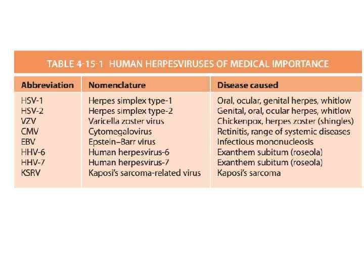 Pediartic HSV Epithelial Keratitis Herpes simplex virus