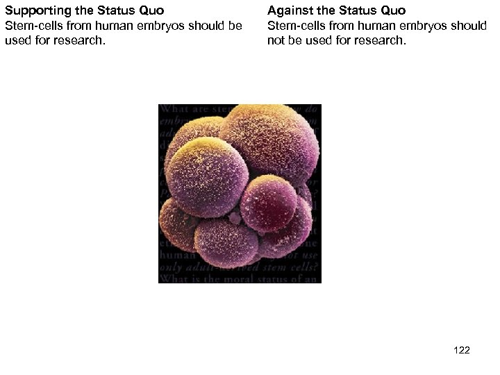 Supporting the Status Quo Stem-cells from human embryos should be used for research. Against