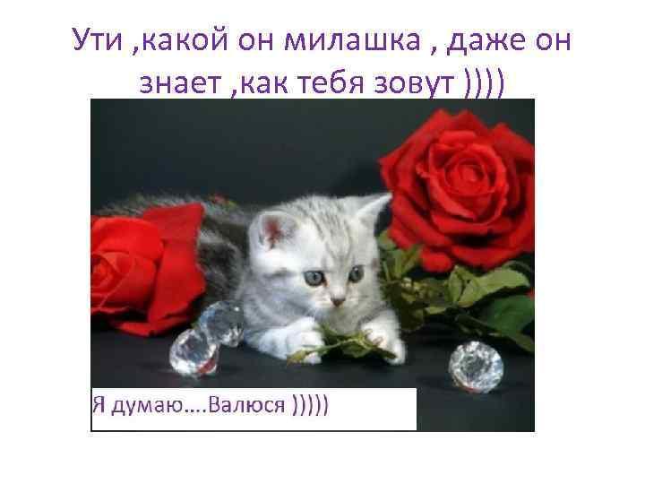 Ути , какой он милашка , даже он знает , как тебя зовут ))))