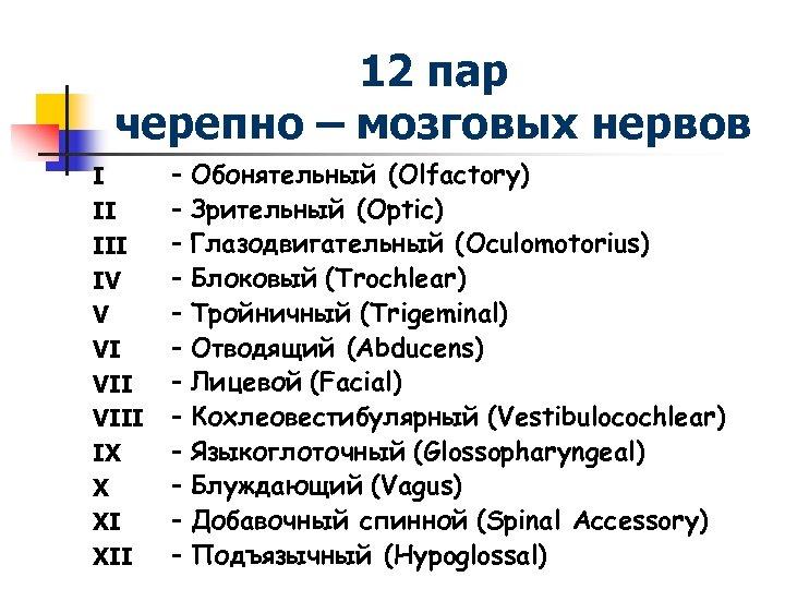 12 пар черепно – мозговых нервов I II IV V VI VIII IX X
