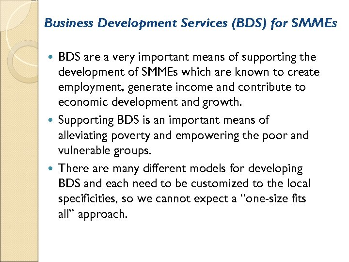 Business Development Services (BDS) for SMMEs BDS are a very important means of supporting