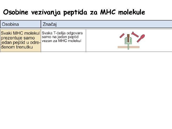 Osobine vezivanja peptida za MHC molekule