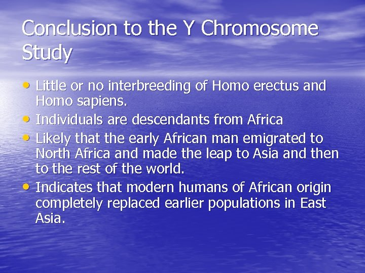 Conclusion to the Y Chromosome Study • Little or no interbreeding of Homo erectus