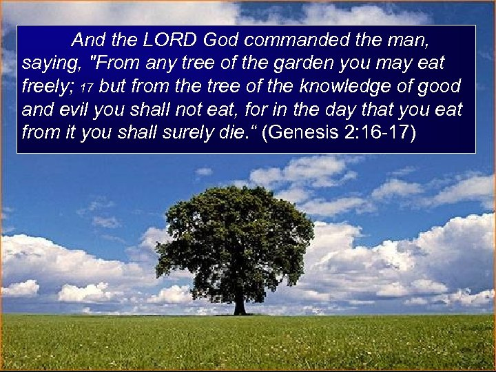 And the LORD God commanded the man, saying,
