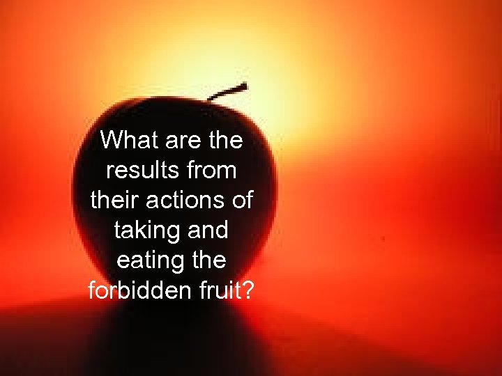 What are the results from their actions of taking and eating the forbidden fruit?