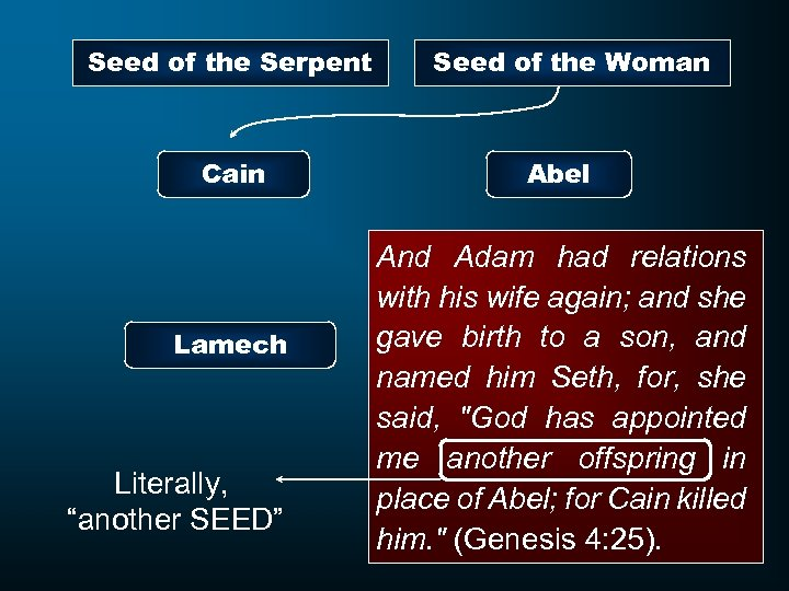 """Seed of the Serpent Cain Lamech Literally, """"another SEED"""" Seed of the Woman Abel"""