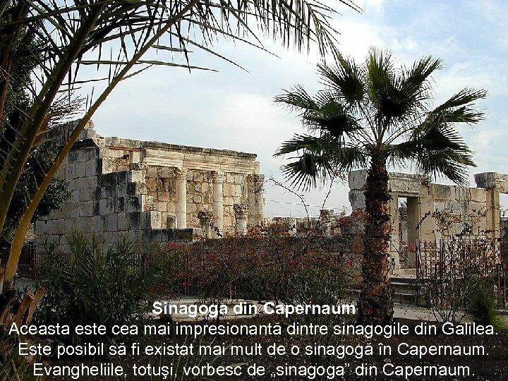 Sinagoga din Capernaum Aceasta este cea mai impresionantă dintre sinagogile din Galilea. Este posibil
