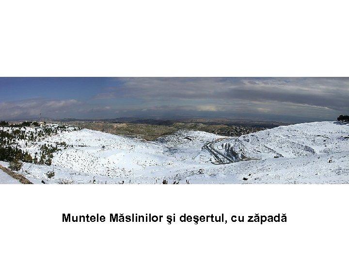 Muntele Măslinilor şi deşertul, cu zăpadă