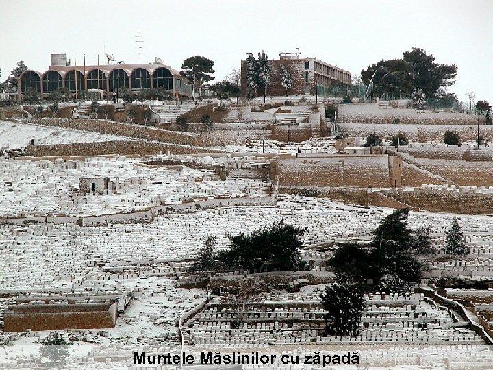 Muntele Măslinilor cu zăpadă